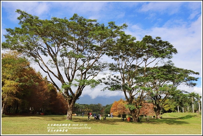 雲山水植物農場-2019-12-77.jpg