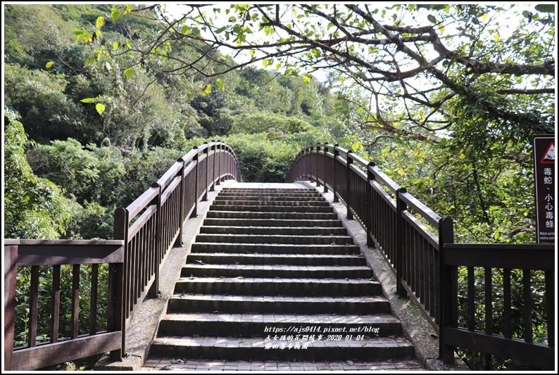富里羅山瀑布梅園-2020-01-06.jpg