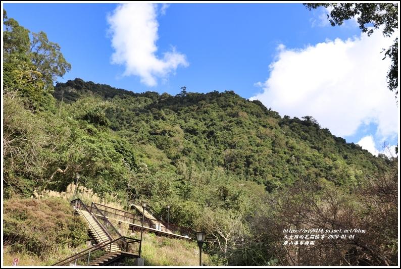 富里羅山瀑布梅園-2020-01-01.jpg