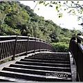 富里羅山瀑布梅園-2020-01-07.jpg