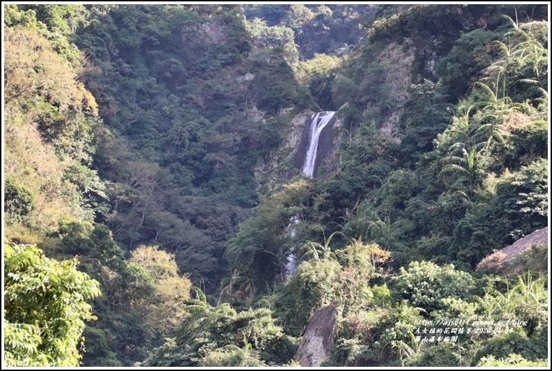 富里羅山瀑布梅園-2020-01-20.jpg