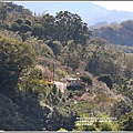富里羅山瀑布梅園-2020-01-19.jpg