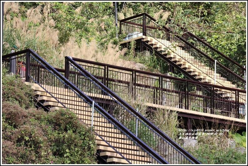 富里羅山瀑布梅園-2020-01-26.jpg