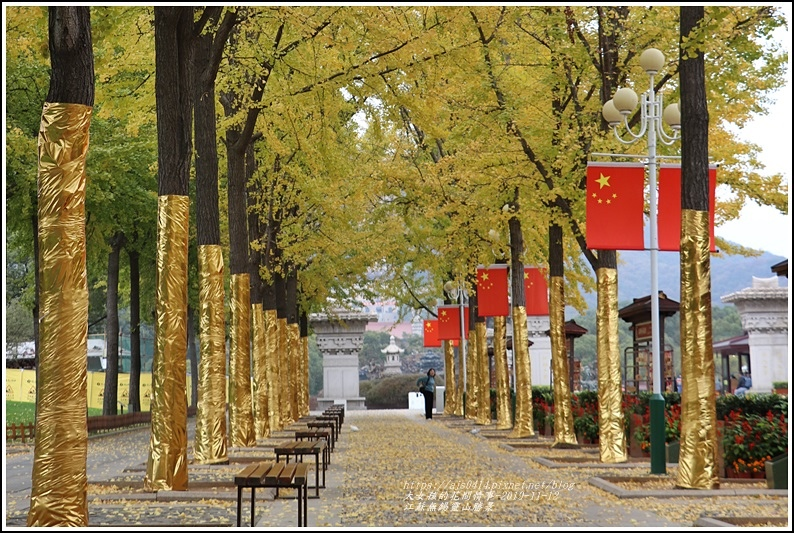 江蘇無錫靈山勝景-2019-11-31.jpg