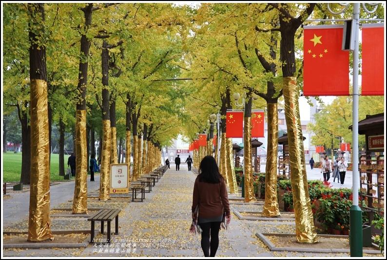 江蘇無錫靈山勝景-2019-11-38.jpg