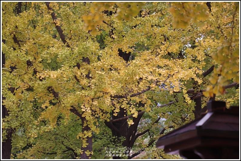 江蘇無錫靈山勝景-2019-11-49.jpg
