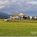富里油菜花田-2020-01-01.jpg