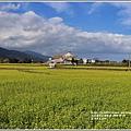 富里油菜花田-2020-01-02.jpg