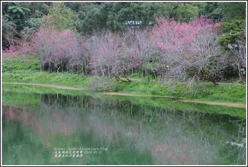 萬榮碧赫潭-2020-01-91.jpg