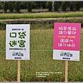 玉溪好運稻來-2020-01-05.jpg