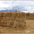 玉溪好運稻來-2020-01-06.jpg