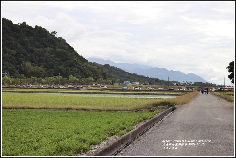 玉溪花海節-2020-01-23.jpg