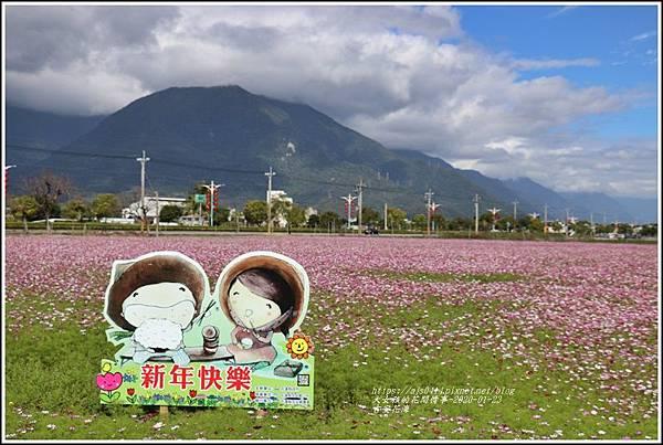 吉安花海-2020-01-19.jpg