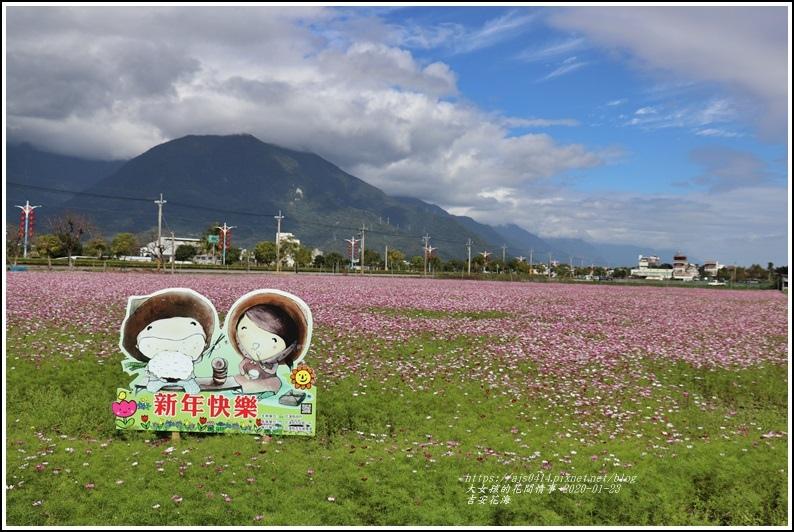 吉安花海-2020-01-21.jpg