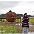 富里稻草藝術節-2020-01-121.jpg