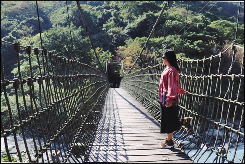 富源森林遊樂區蝴蝶谷-2019-12-16.jpg