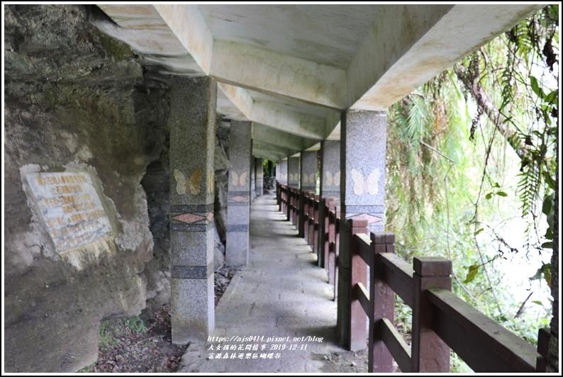 富源森林遊樂區蝴蝶谷-2019-12-40.jpg