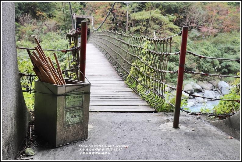 富源森林遊樂區蝴蝶谷-2019-12-66.jpg