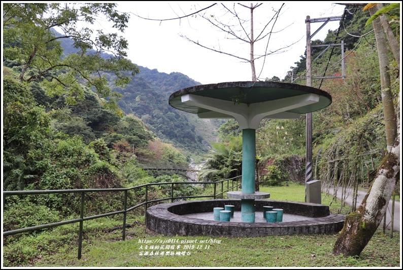 富源森林遊樂區蝴蝶谷-2019-12-68.jpg