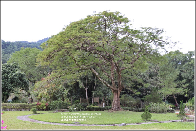 富源森林遊樂區蝴蝶谷-2019-12-76.jpg