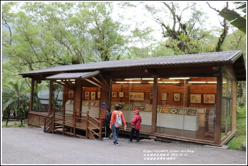 富源森林遊樂區蝴蝶谷-2019-12-134.jpg
