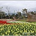 池上四季花海-2020-01-12.jpg
