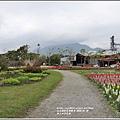 池上四季花海-2020-01-31.jpg