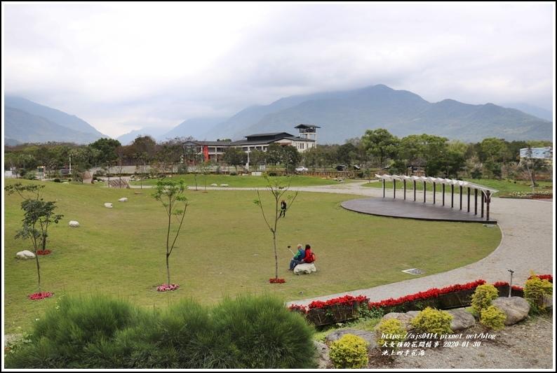池上四季花海-2020-01-39.jpg