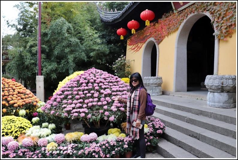 江蘇無錫錫惠公園-2019-11-41.jpg