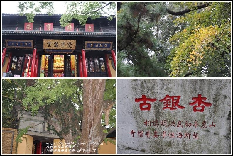 江蘇無錫錫惠公園-2019-11-47.jpg