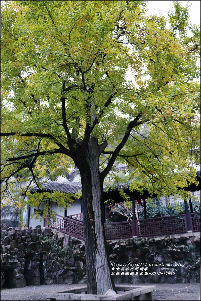 江蘇無錫錫惠公園-2019-11-50.jpg