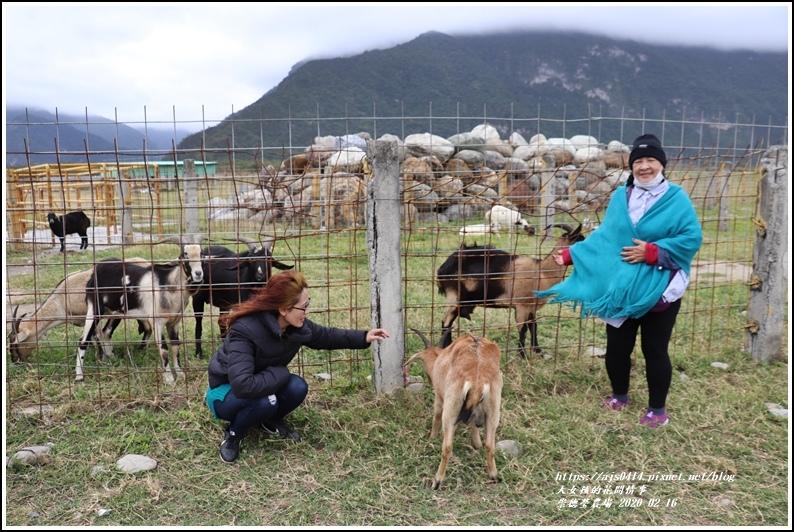 崇德瑩農場-2020-02-05.jpg