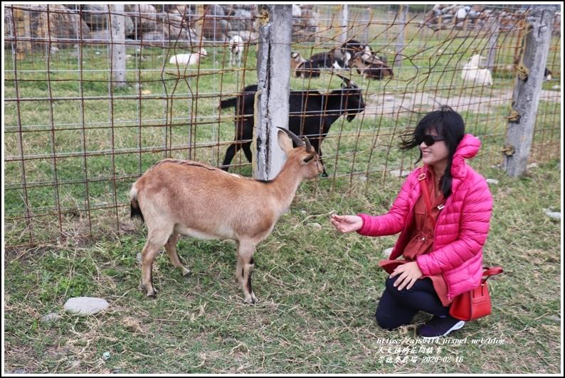 崇德瑩農場-2020-02-11.jpg