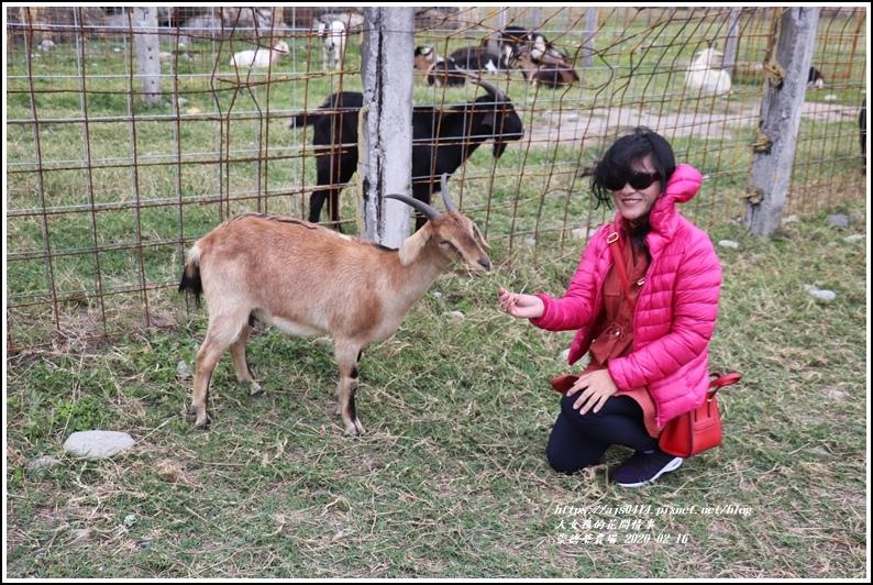 崇德瑩農場-2020-02-10.jpg