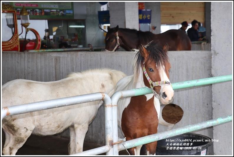 崇德瑩農場-2020-02-63.jpg