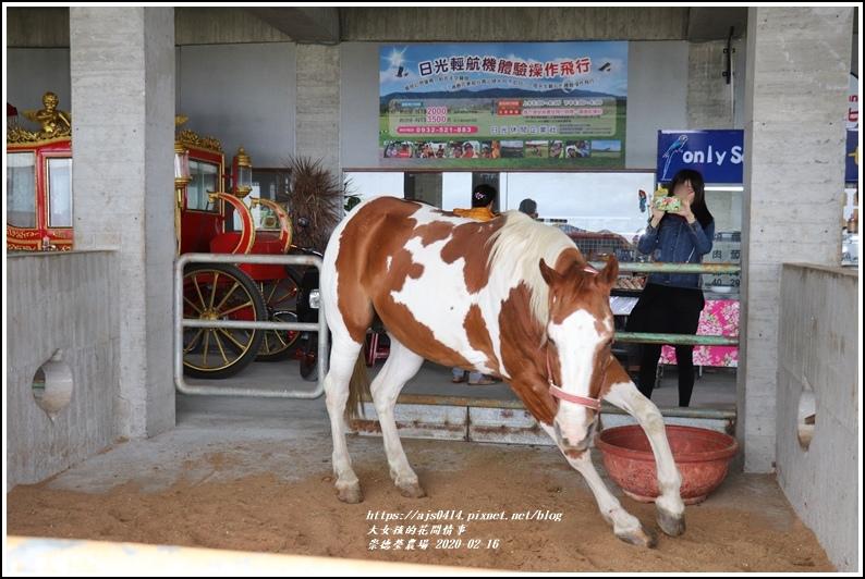 崇德瑩農場-2020-02-64.jpg