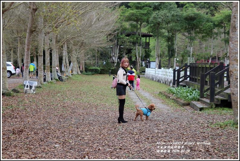 瑞穗牧場-2020-02-04.jpg