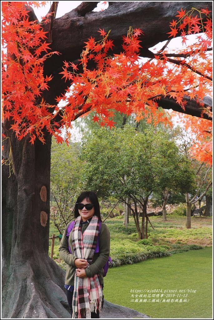 江蘇無錫三國城(無錫影視基地)-2019-11-50.jpg