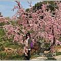 江蘇無錫三國城(無錫影視基地)-2019-11-129.jpg