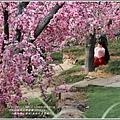 江蘇無錫三國城(無錫影視基地)-2019-11-144.jpg