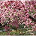 江蘇無錫三國城(無錫影視基地)-2019-11-143.jpg
