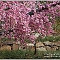 江蘇無錫三國城(無錫影視基地)-2019-11-146.jpg