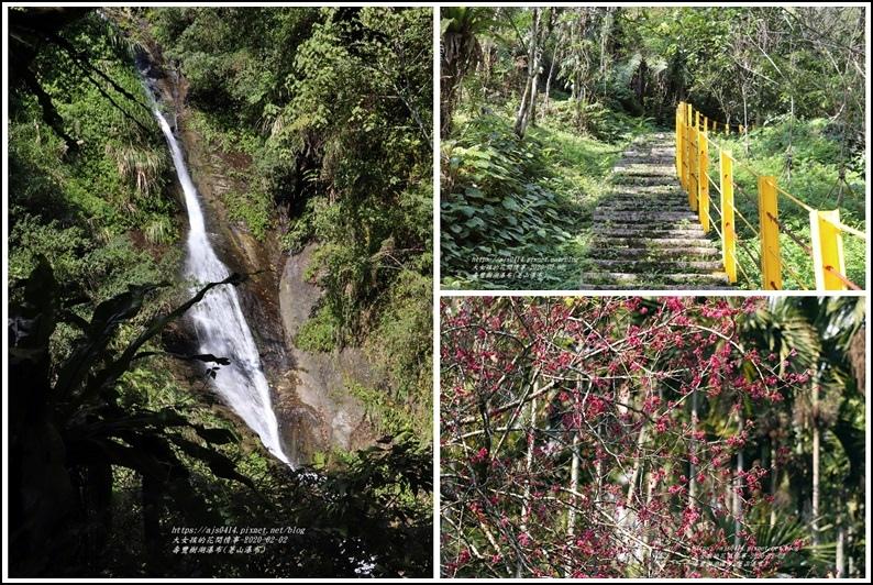 壽豐樹湖瀑布(荖山瀑布)2020-02-46.jpg