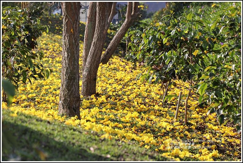 統茂渡假村莊園-2020-03-11.jpg