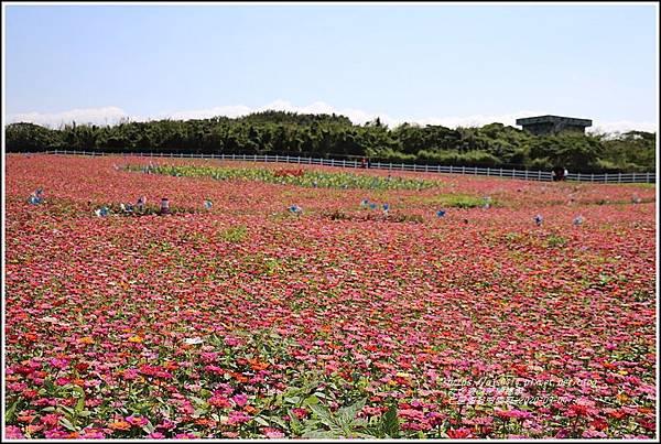 七星潭曼波園區-2020-03-13.jpg