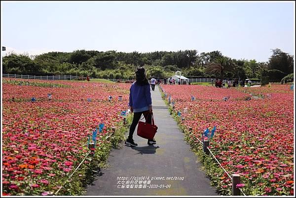 七星潭曼波園區-2020-03-14.jpg