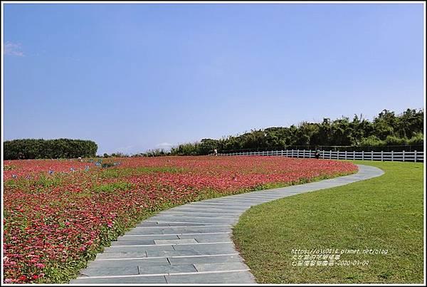 七星潭曼波園區-2020-03-35.jpg