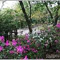 林田山文化園區-2020-02-07.jpg