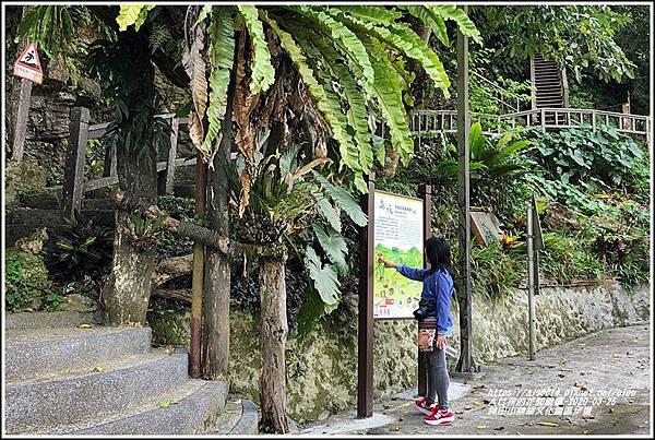 林田山林業文化園區步道-2020-03-97.jpg