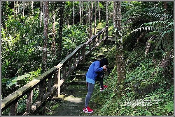 林田山林業文化園區步道-2020-03-100.jpg